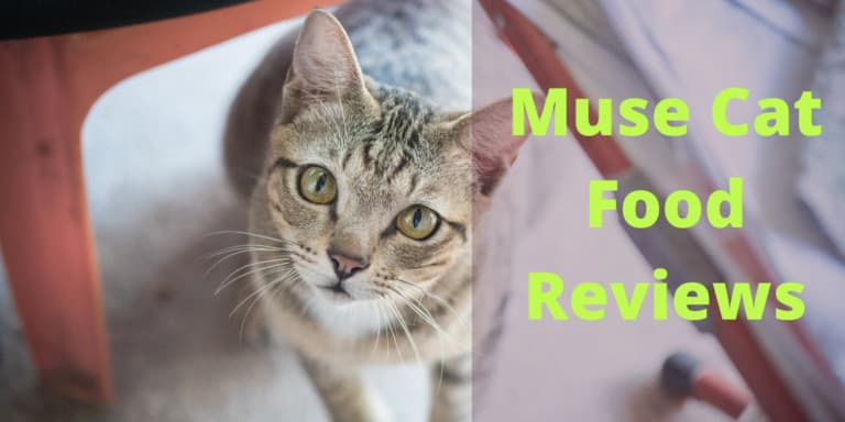 Muse Cat Food Reviews | Best Muse Dry and Wet Food Analysis