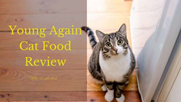 Young Again Cat Food Reviews | 6 Foods By Young Again Industry | MyBestCatFood