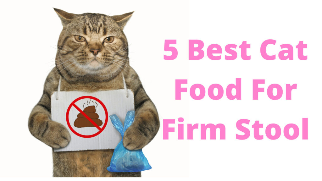 Best Cat Food For Firm (Hard) Stool