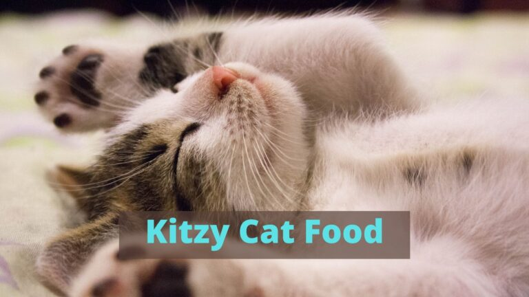 kitzy cat food review