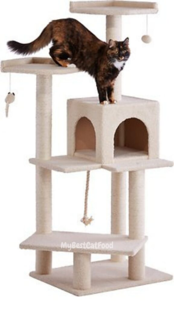 cat tree with litter box