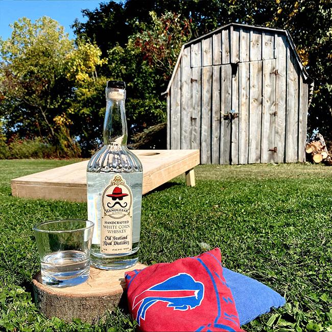 Handlebar Whiskey sits in backyard among corn-hole and Buffalo Bills bean bags