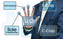 Business entity selection and restructuring services