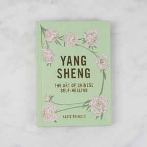 Yang Sheng: The Art of Chinese Self-Healing by Katie Brindle book
