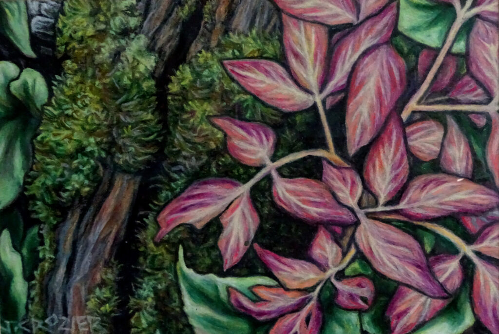 """<p style=""""font-size: 16px; line-height: 150%;""""><strong><em>Woodland Floor </em></strong>&emsp;<br />   oil pastel&emsp;<br /> 10&rdquo; x 13&rdquo; 