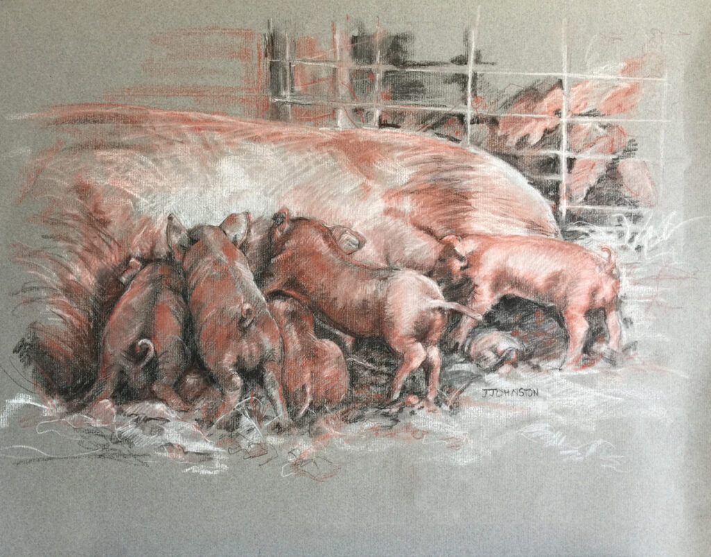 """<p style=""""font-size: 16px; line-height: 150%;""""><em><strong>Pile of Piglets&emsp;<br> </strong></em>Charcoal and Conte  / 31&rdquo; x 27&rdquo; / Framed&emsp;<br> <strong>$500</strong></p>"""