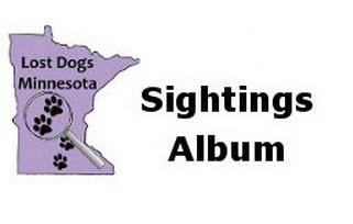 Dog-sightings-Album