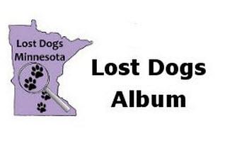 Lost-Dogs-Album