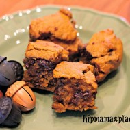 Pumpkin Chocolate Chip Squares (Thanksgiving Dessert)