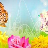 """Kings Dominion """"Spring Bloom Festival"""" and Our Recent Family Visit  {My Review}"""