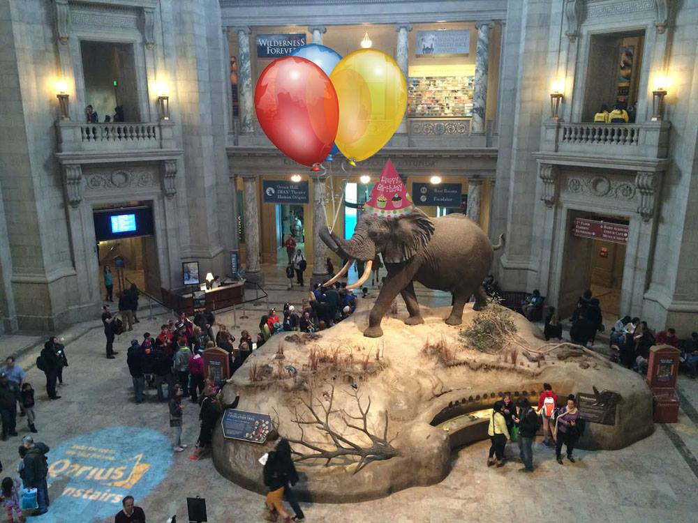 smithsonian-natural-history-museum