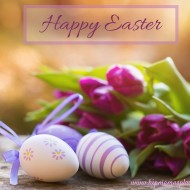 A New Birth – Happy Easter!