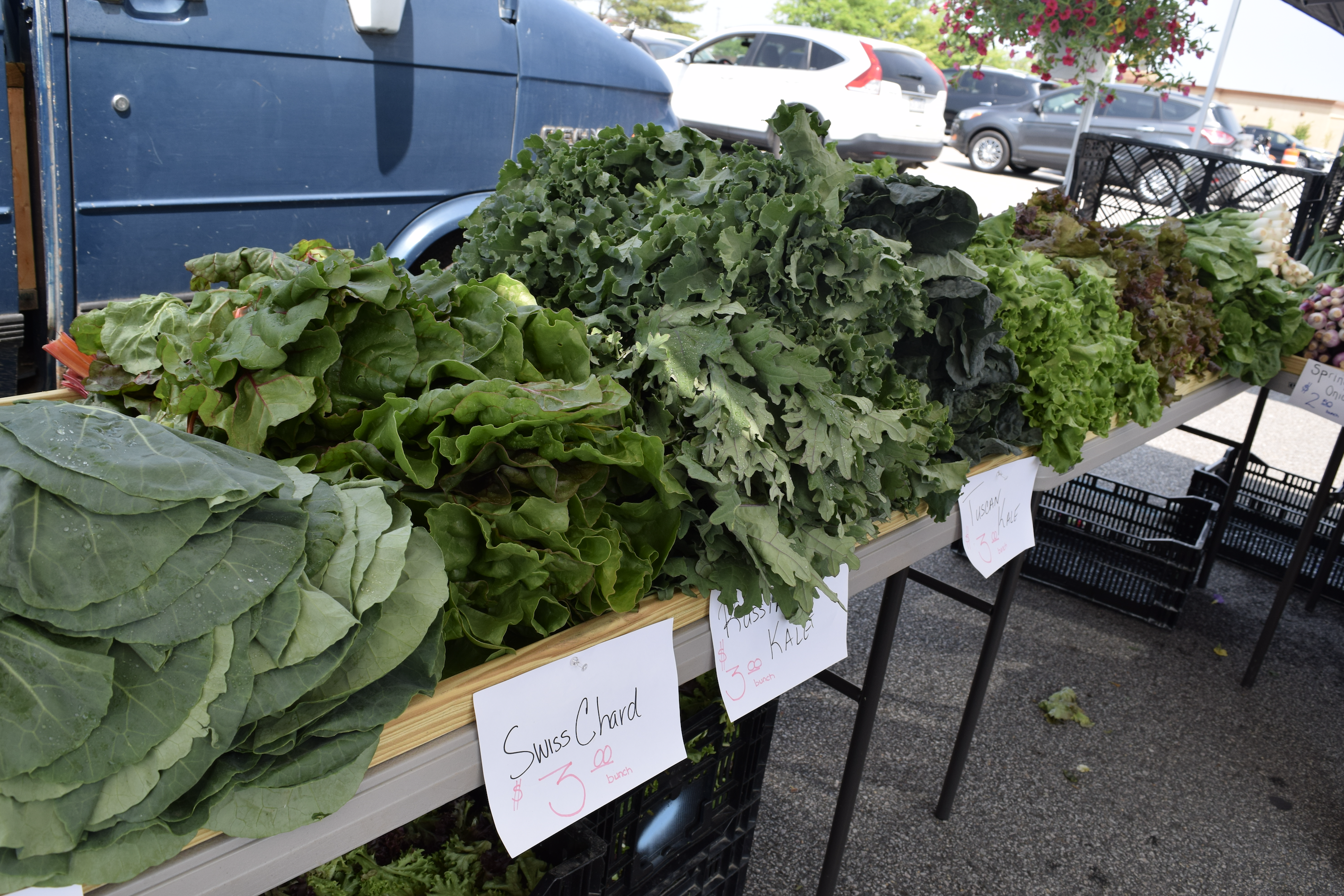 Fresh produce found at the farmers market in Woodbridge, Virginia (The Market at Potomac Mills)
