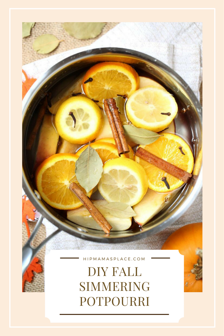 Make your home smell like Fall with this DIY Fall Simmering Potpourri recipe!