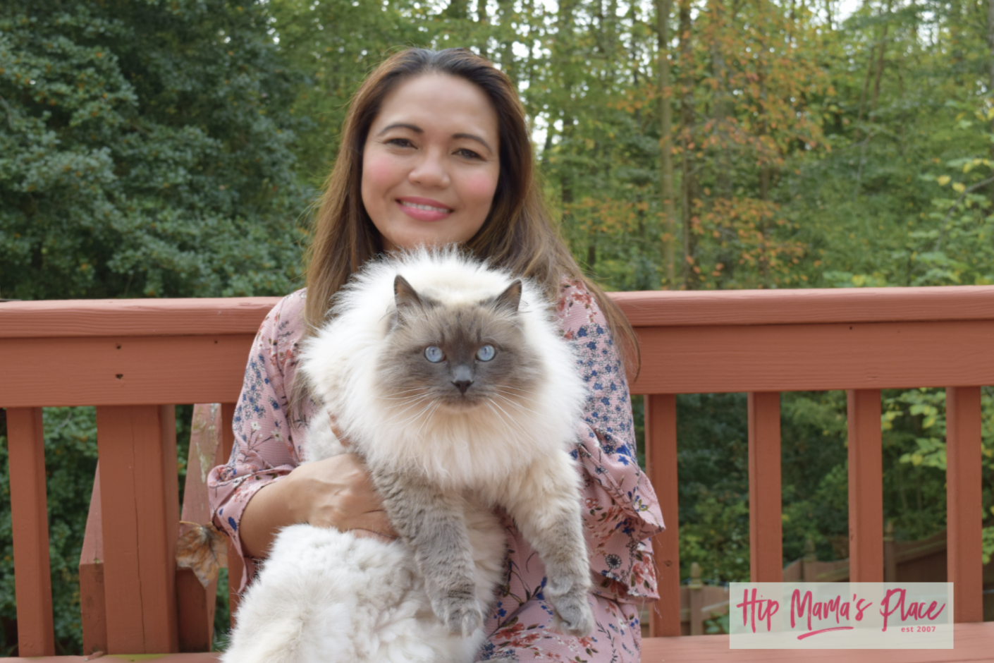 October 29 Is National Cat Day Celebrate With Fresh Step Litter Catluv Campaign