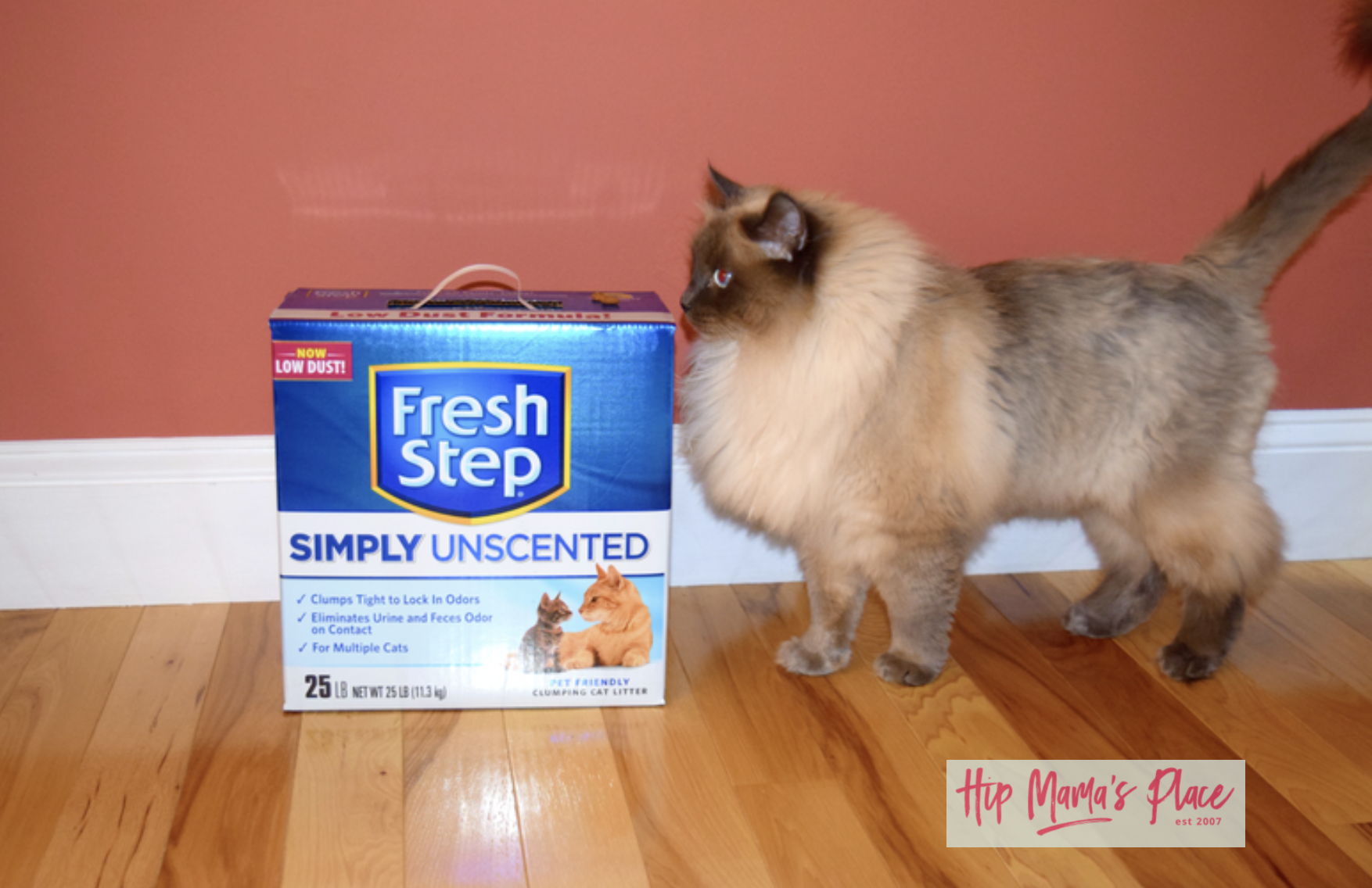 October 29 is National Cat Day and I'm happy to be partnering with Fresh Step® Litter for this post celebrating our love for our pet cat, Oscar!