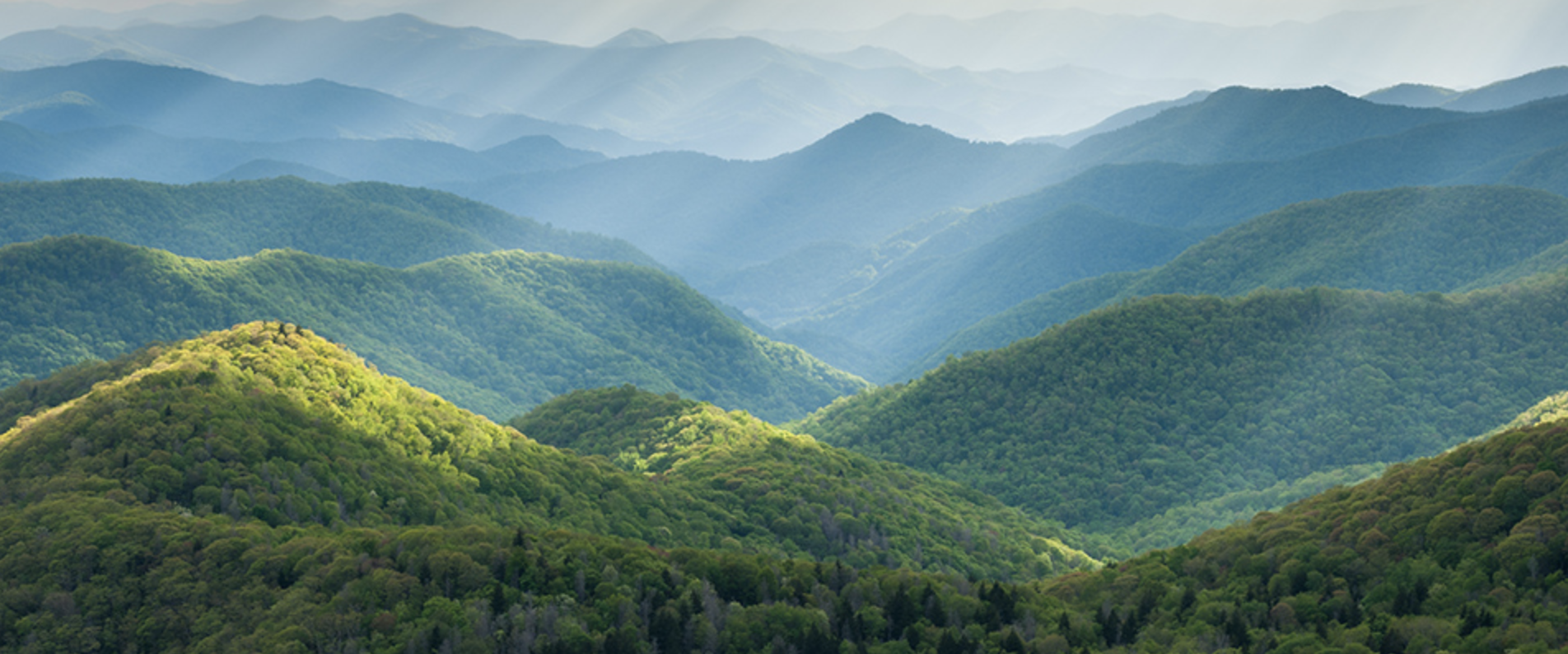 It comes as a no-brainer, but one of the best reasons to visit Pigeon Forge, TN is to get a real life view of the miraculous, picturesque Smoky Mountains.