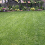 Tips for Hiring a Lawn Care Service in Northern Virginia