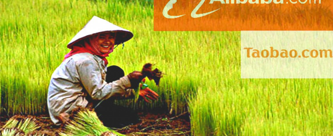 Internet and e-commerce help Chinese farmers to increase incomes