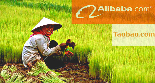 Chinese farmer helped by Internet and e-commerce to increase their income