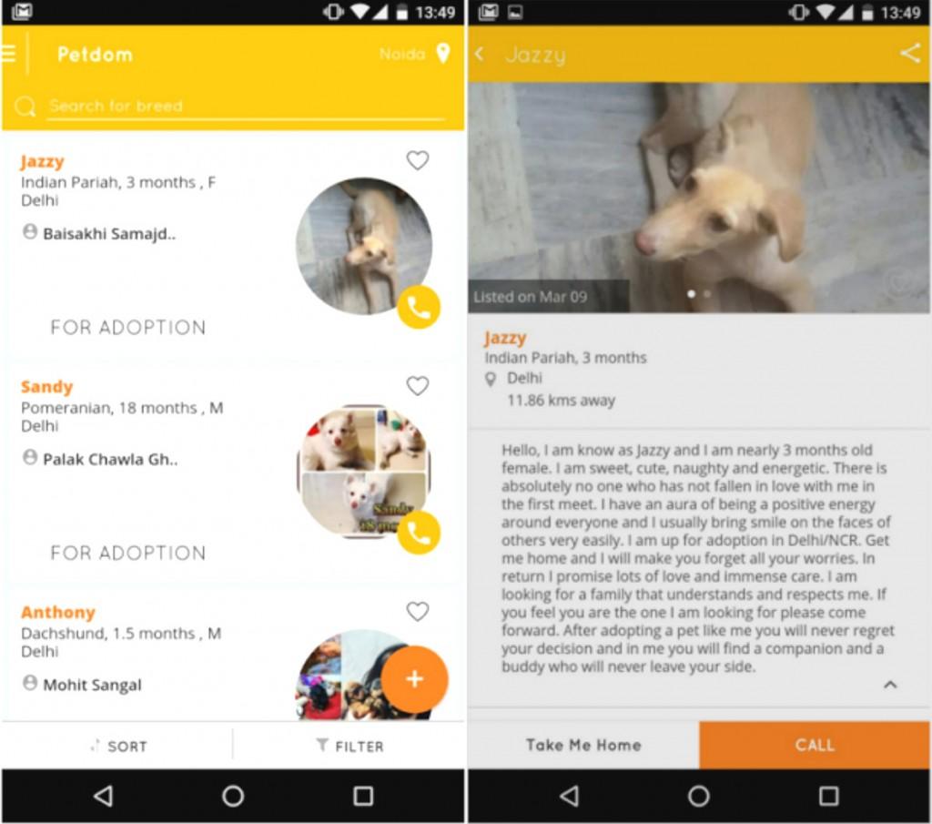 petdom app screen