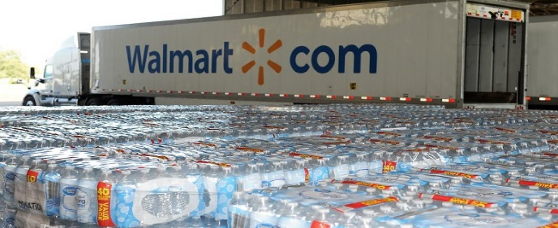 Walmart+ – A Membership Program by Walmart Cost $98 a year