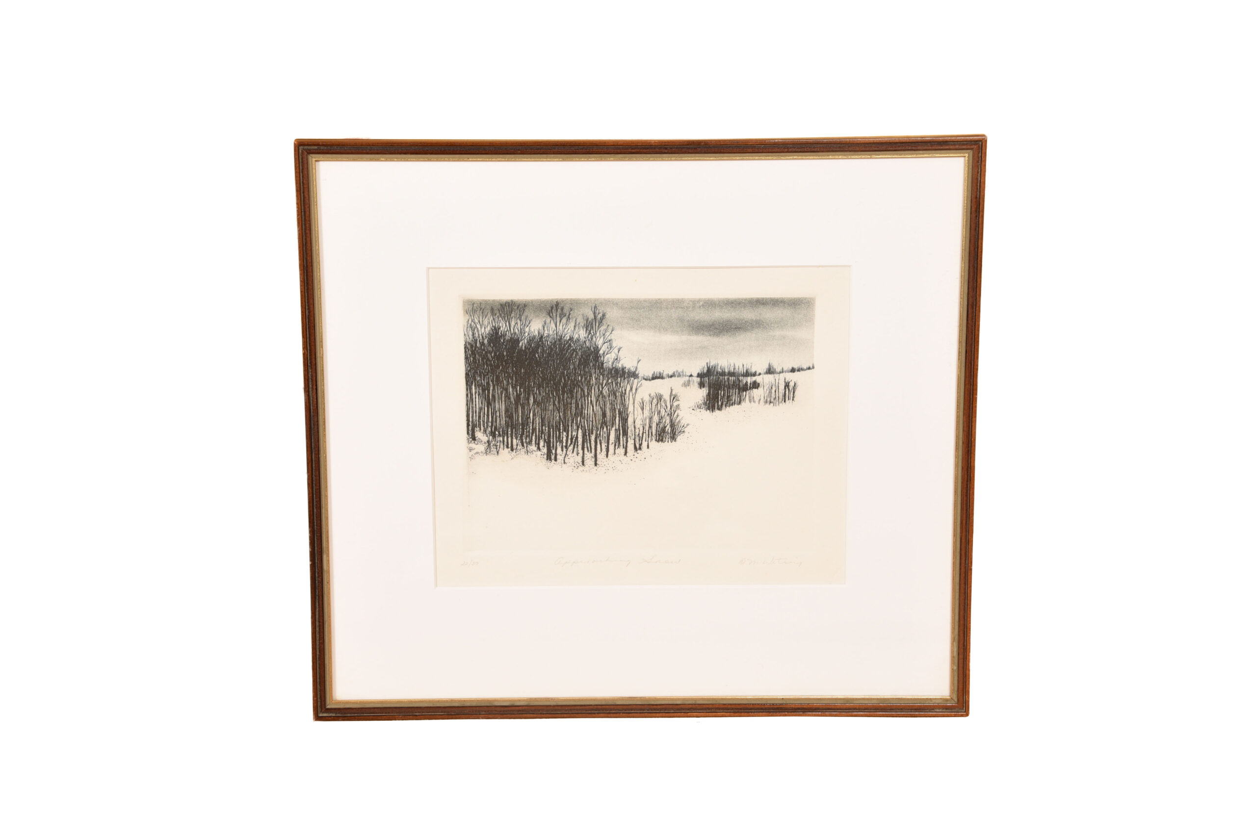 Monochromatic Print of Winter Forest on a Snowy Day