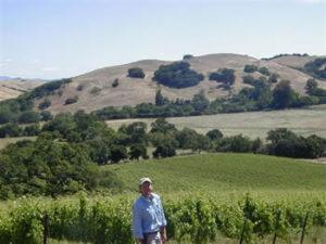 Stew Above Vineyard