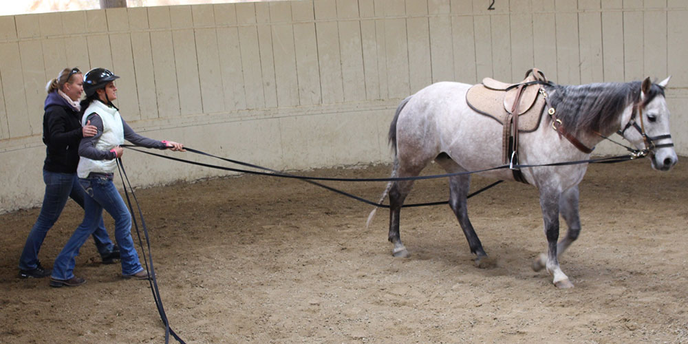 Monty Roberts Module 03 - Long Lining - The Benefits, Form & Fun