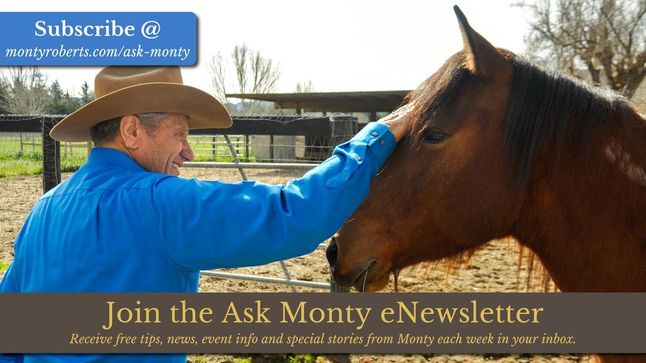 Ask Monty eNewsletter