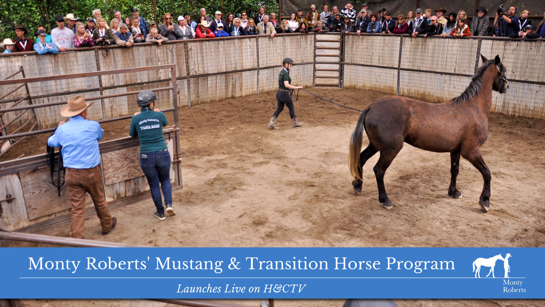 Monty Roberts' Mustang & Transition Horse Program Launches Live on H&CTV