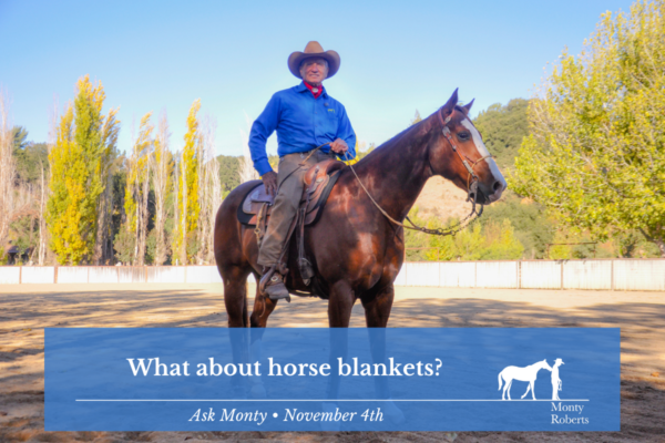 Ask Monty - What about horse blankets