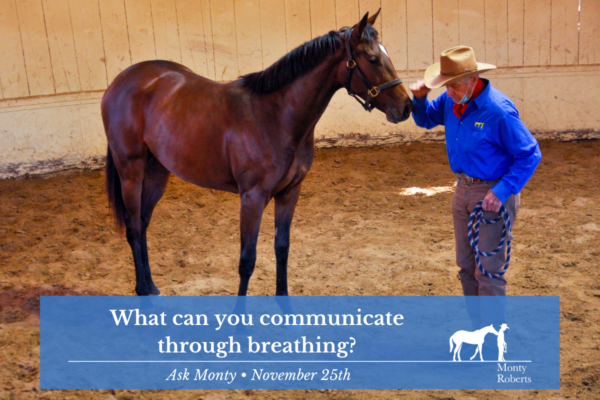 Ask Monty - what can you communicate through breathing
