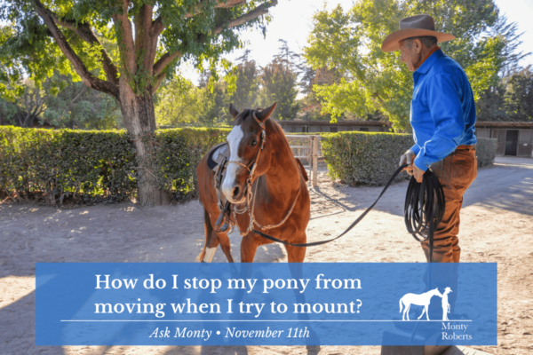 Ask Monty - How do I stop my pony from moving when I try to mount