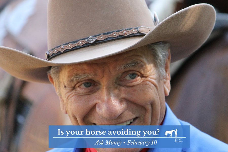 Is your horse avoiding you?