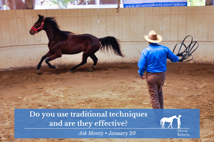 Ask Monty - Do you use traditional techniques and are they effective?