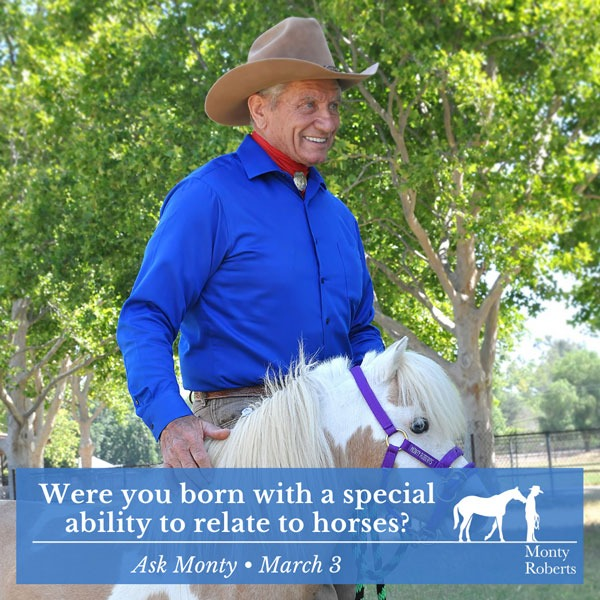 Ask Monty - were you born with a special ability to relate to horses?
