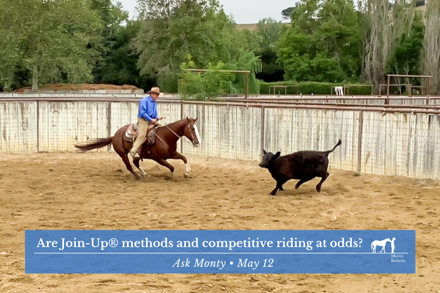 Ask Monty - Are Join-Up® methods and competitive riding at odds?