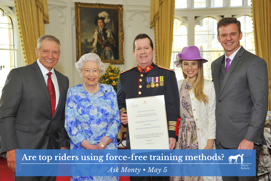 Ask Monty - Are top riders using force-free training?