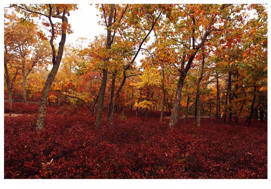 Minnewaska State Park Preserve 064