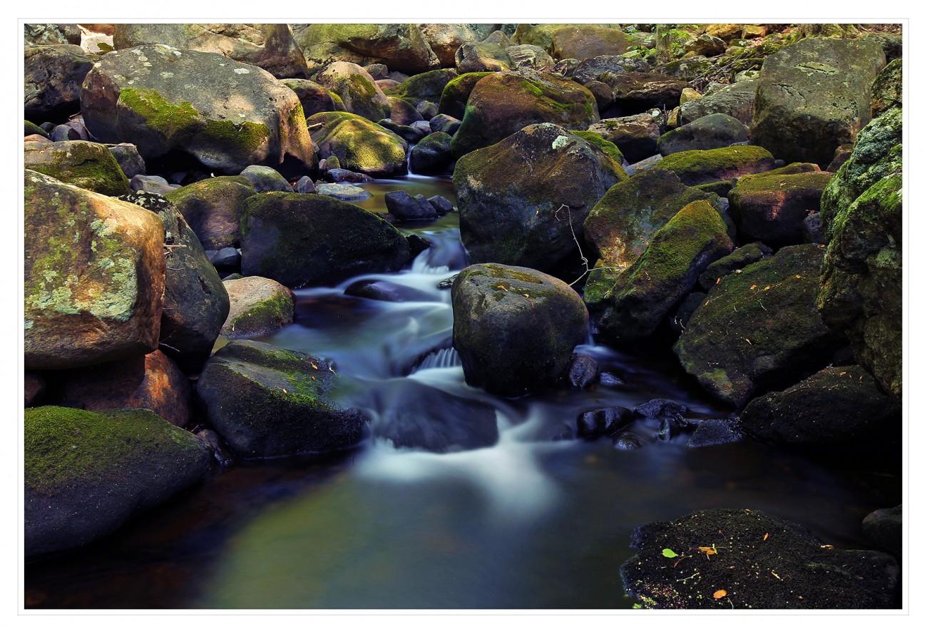 Harriman State Park 014