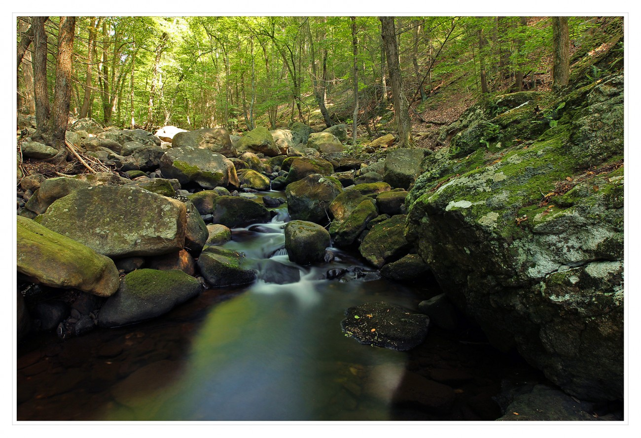 Harriman State Park 016