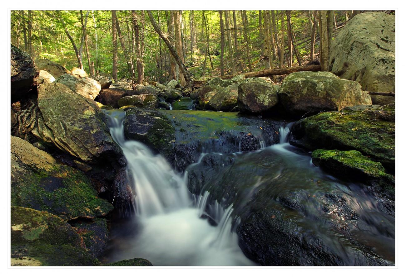 Harriman State Park 067