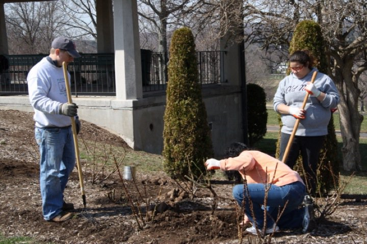 Planting Day 2011 – 16