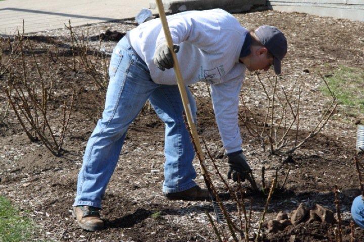 Planting Day 2011 – 17
