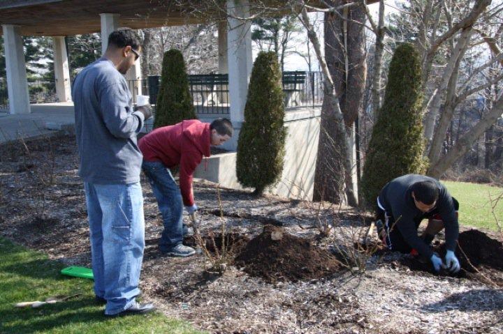 Planting Day 2011 – 8