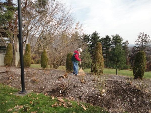 Winterizing A Garden Workshop 2010 – 12