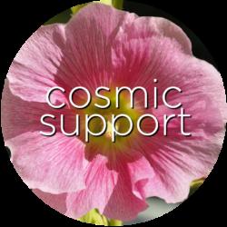 cosmic support hollyhock flower essence