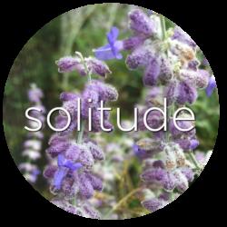 russian sage solitude flower essence