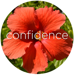 hibiscus storm confidence flower essence